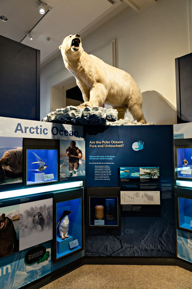 Arctic Exhibit 1
