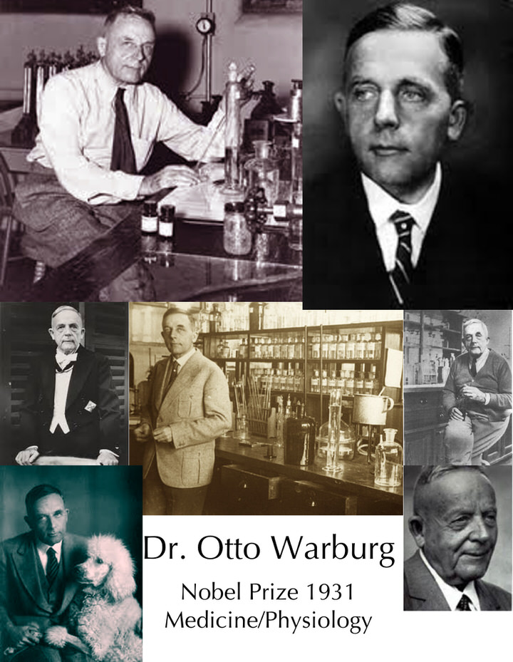 otto warburg images collage 1