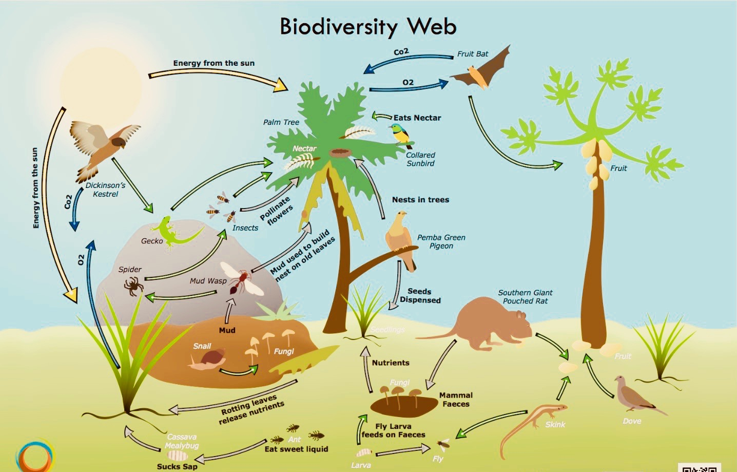biodiversity loss feature 2