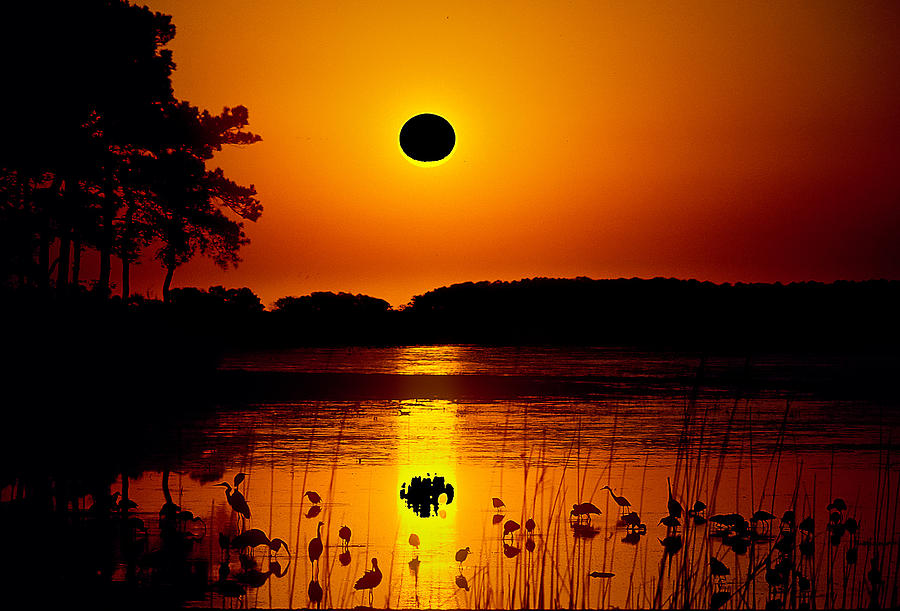 eclipse over water floridas best images