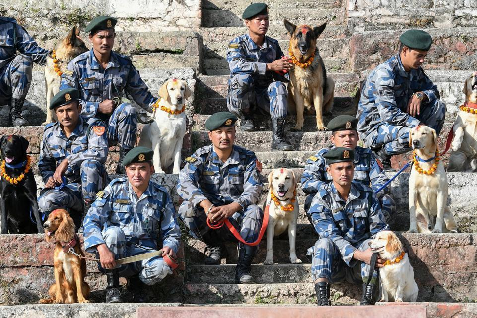 Dogs with Nepal Police